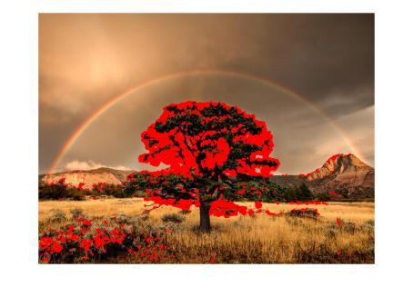 hw04_rainbow_corners